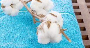 cotton-usa